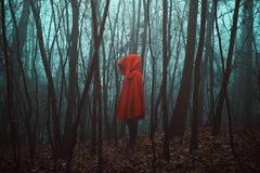 Mysterious figure in dead forest. Misty woods Royalty Free Stock Photos