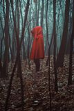 Mysterious figure in misty forest Stock Photo