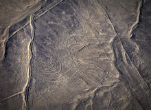 Mysterious figures Nazca desert from the aircraft Stock Photos