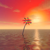 A mysterious flower in the ocean Royalty Free Stock Image