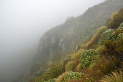 Mysterious Foggy Slope Royalty Free Stock Images
