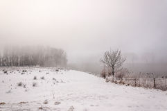 Mysterious foggy winter landscape on a very cold day Stock Images