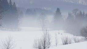 Mysterious foggy winter morning Stock Photos