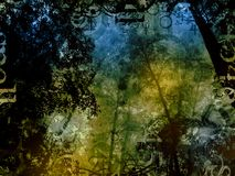 Mysterious forest magic fantasy background. Collage Royalty Free Stock Images