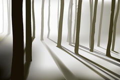 Mysterious forest Stock Photography