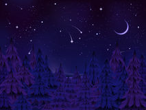 Mysterious forest night. Mysterious night of Christmas pine forest under a starry moonlit sky Royalty Free Stock Photo