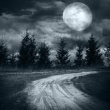 Mysterious forest under dramatic cloudy sky at full moon night Stock Photos