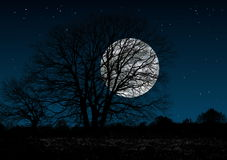 Mysterious  full moon Royalty Free Stock Photo