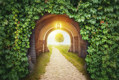 Mysterious gate entrance in paradise. New life or beginning concept Stock Photography
