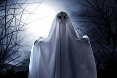 Mysterious ghost on the forest. At night royalty free stock photos