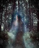 Mysterious Ghost Woman with Cloak in Woods. A mysterious woman in a dark dress and cloak is walking in the woods and forest with trees and smoke for a thriller stock image
