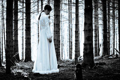 Mysterious girl in dark spooky forest royalty free stock photography