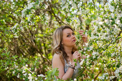 The mysterious girl in the garden Stock Photography