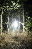 Mysterious Glowing Object Hovering in Forest Glade. Mysterious Glowing White Diamond Shaped Anomaly Floating Above Grassy Secluded Forest Clearing Illuminating Royalty Free Stock Image