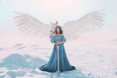 Mysterious goddess of peace and justice from heaven near magical fairy white pegasus with strong wings, lady with neat stock images