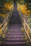 Mysterious golden staircase Royalty Free Stock Images