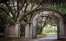 Mysterious Grand Entrance. Gorgeous plantation entrance in Savannah, GA royalty free stock photo