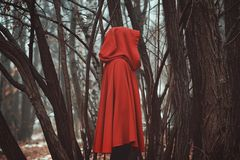 Mysterious hooded figure Royalty Free Stock Photos