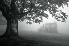 Mysterious house in foggy forest Stock Photo
