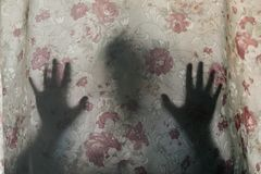 Free Mysterious Human Shadow Behind A Curtain Royalty Free Stock Image - 119893546