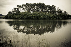Mysterious island. Island in meedle of a lake and its reflection in waters of this. The atmosphere is mysterious and oppressive Royalty Free Stock Images