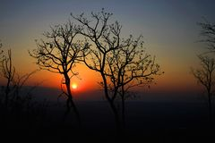Mysterious landscape of the sunset in the Brazilian savannah stock images
