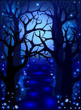 Mysterious magic forest in the moonlight Royalty Free Stock Images