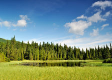 Mysterious Marichaika lake in the forest Royalty Free Stock Photos