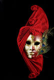 Mysterious mask2. Mysterious venetian mask stock photos