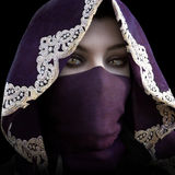Mysterious masked hooded female staring at the camera stock illustration