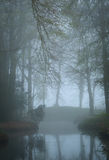 Mysterious mood. At a pond in a landscape park on a foggy, spring day Royalty Free Stock Photos