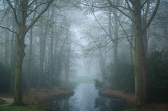 Mysterious mood. At a pond in a landscape park on a foggy, spring day stock photo
