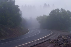 Mysterious mountain road in foggy weather. Mysterious lacet road to El Teide Volcano National Park covered in mist with rocks on side and trees around, Tenerife Royalty Free Stock Images
