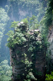Mysterious Mountains Zhangjiajie, Hunan Province In China. Royalty Free Stock Images
