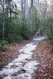 Mysterious Muddy Trail in the Fall stock photography