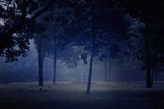 Mysterious park Stock Images