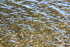 Mysterious patterns on the water royalty free stock photography