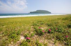Mysterious Petrov island. Royalty Free Stock Photo