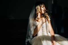 Mysterious picture of stunning bride hidden under light veil royalty free stock photo