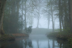 Mysterious pond. Pond in a landscape park on a foggy, spring day stock photos
