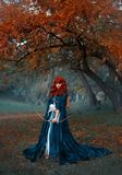 A mysterious red-haired warrior girl stands guard over her land, a brave princess holds a bow and arrows, preparing for. Battle, an attractive woman in a misty stock photography