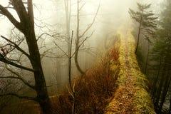 Mysterious ridge trail Royalty Free Stock Photo