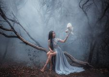 Mysterious sorceress with a bird. Mysterious sorceress in a beautiful blue dress. The background is a cold forest in the fog. Girl with a white owl. Artistic royalty free stock photo