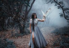 Mysterious sorceress with a bird. Mysterious sorceress in a beautiful blue dress. The background is a cold forest in the fog. Girl with a white owl. Artistic stock images