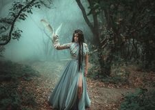 Mysterious sorceress with a bird. Mysterious sorceress in a beautiful blue dress. The background is a cold forest in the fog. Girl with a white owl. Artistic stock photo