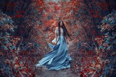 Mysterious sorceress with a bird. Mysterious sorceress in a beautiful blue dress. Her hair and dress are fluttering in the wind. Background bright, autumn, fiery stock image
