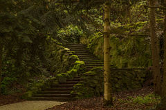 Mysterious stairs Royalty Free Stock Photos