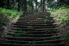 Mysterious steps Royalty Free Stock Photo