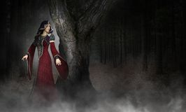 Mysterious Surreal Medieval Woman, Forest Royalty Free Stock Photo
