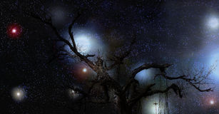 Mysterious Tree at Night. A mysterious banyan tree with a backdrop of the stars and planets at night Stock Photo